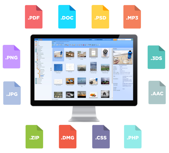digital asset management file types